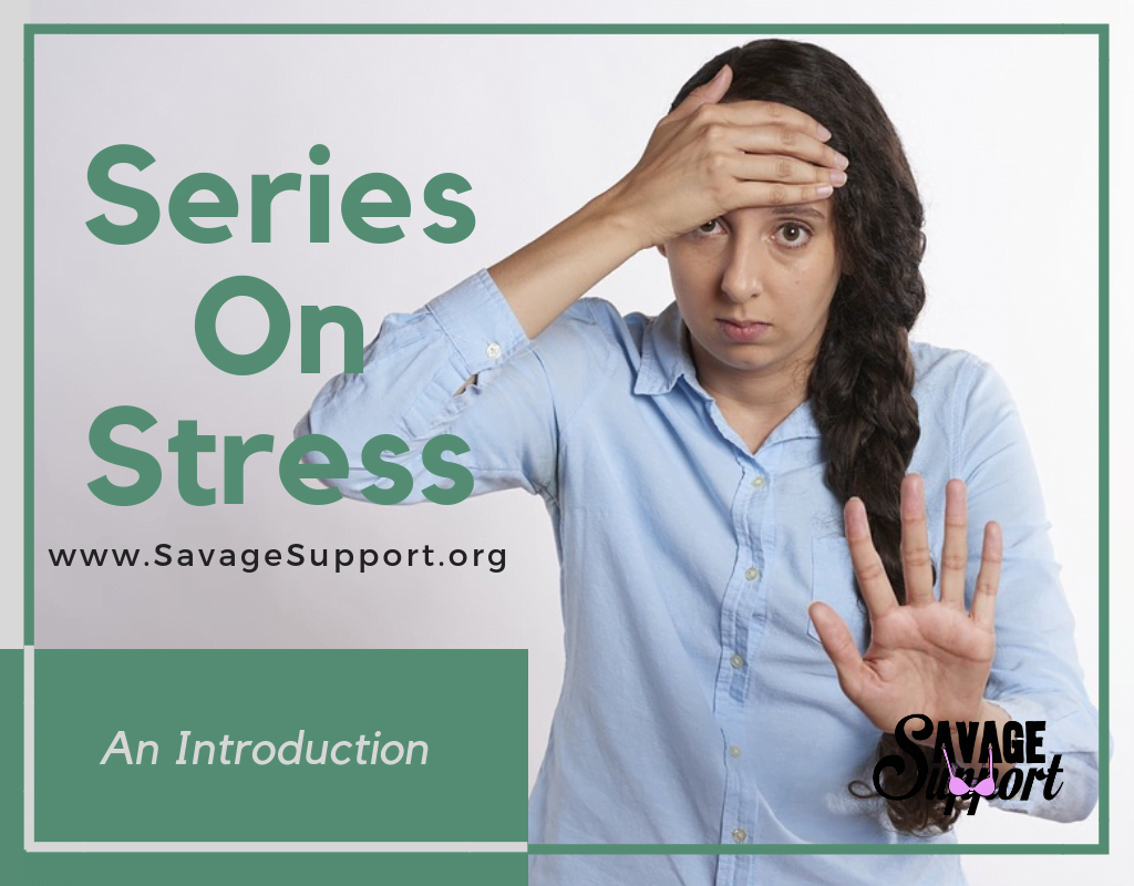 Series On Stress: An Introduction