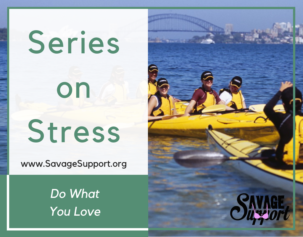 Series on Stress: Do What You Love