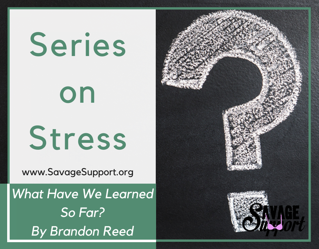 Series On Stress: What Have We Learned So Far?